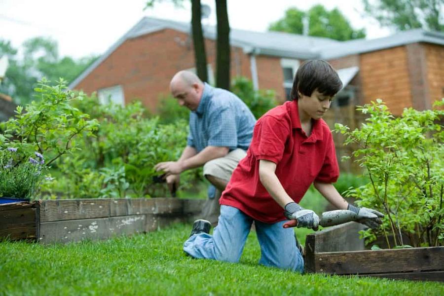 Gardeningelsa – Best Organic Gardening Fertilizer