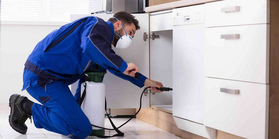 Ensure you hire a Reliable and Competent Pest Control Service