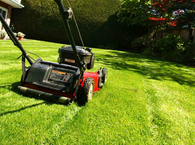 Why Is Lawn Maintenance Important?