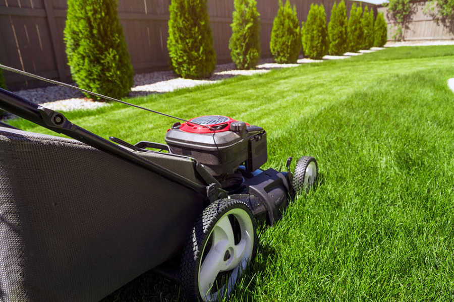 What Makes A Good Lawn Care Company?