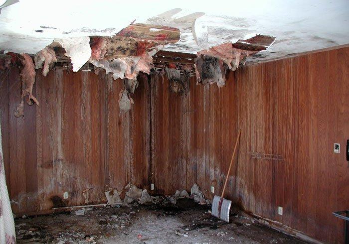 The Importance of Basement Repair
