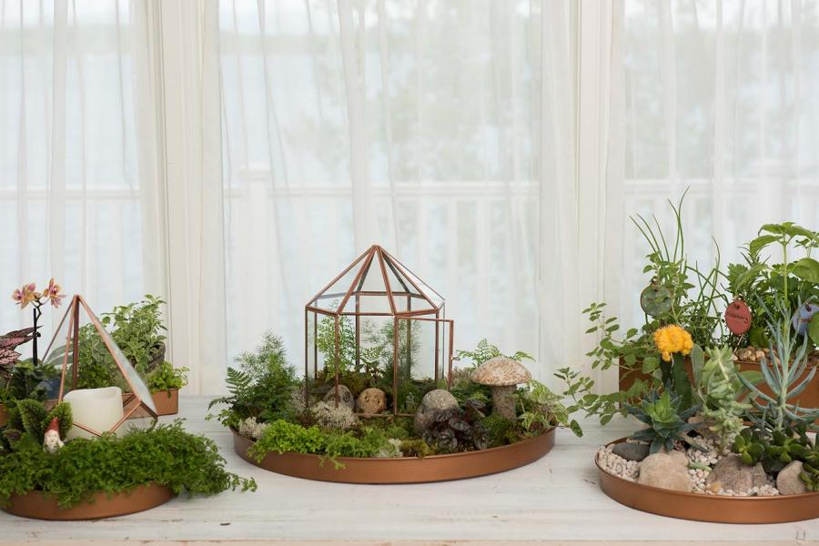 DIY Indoor Garden